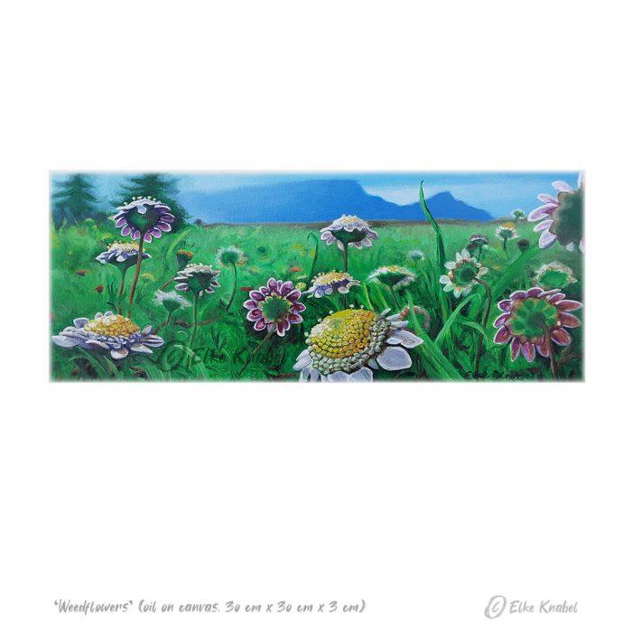 Elke Knabel_Weedflowers