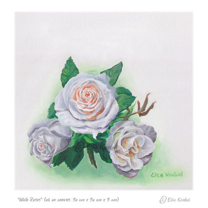 Elke Knabel_White Roses